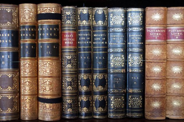 books_viaxlibber