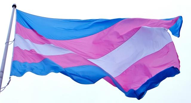 transflag_viaTorbakhopper