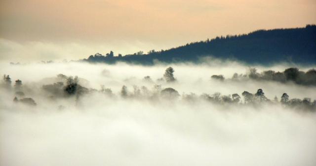 Fog_viaKevan
